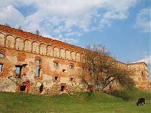 Южная крепостная стена Старосельского замка