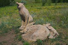 Волчье семейство в ландшафтном парке Клебан-Бык Александро-Калиново