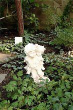 Статуетка в оранжереї Докучаєвська