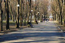 Центральна алея дніпропетровського парку ім. Т.Г. Шевченка
